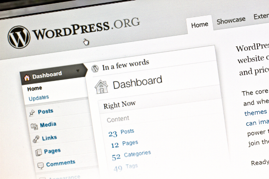 wordpress newbies